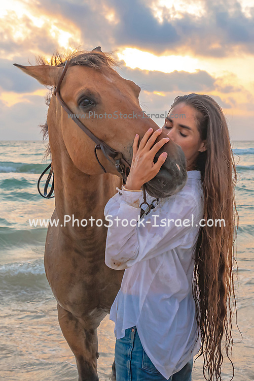 Young woman shows affection to her horse at the water's edge on a Mediterranean beach at sunset