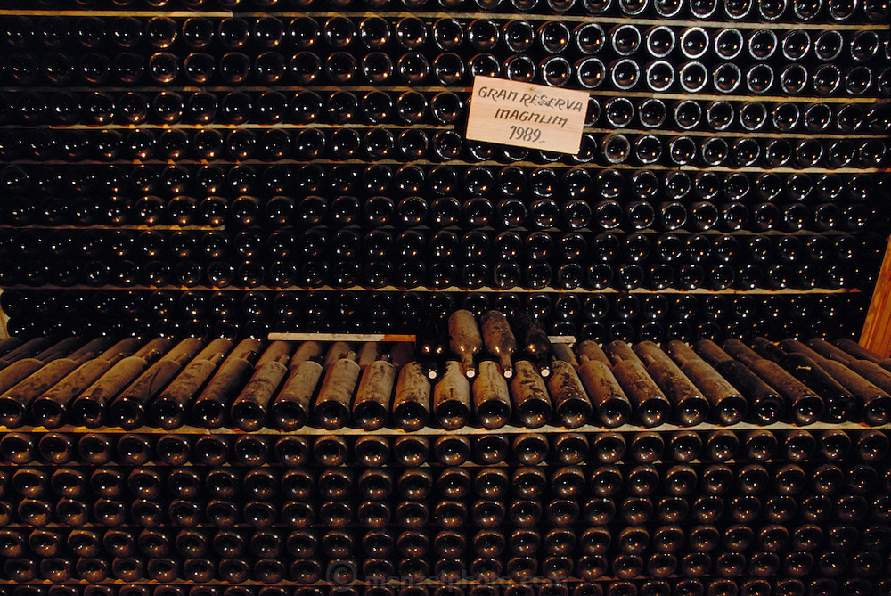 Wine bottles at Bodegas Muga winery, Haro. (Gran Gran reserva magnums, 1989.) La Rioja, Spain.