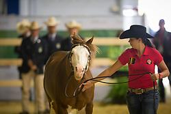 Cira Baeck, (BEL), Colonels Shining Gun - Horse Inspection Reining  - Alltech FEI World Equestrian Games™ 2014 - Normandy, France.<br /> © Hippo Foto Team - Dirk Caremans<br /> 25/06/14