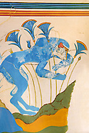 The 'Blue Monkey' Minoan fresco, reconstructed at Knossos Archaeological Site, Crete ..<br /> <br /> Visit our GREEK HISTORIC PLACES PHOTO COLLECTIONS for more photos to download or buy as wall art prints https://funkystock.photoshelter.com/gallery-collection/Pictures-Images-of-Greece-Photos-of-Greek-Historic-Landmark-Sites/C0000w6e8OkknEb8 <br /> .<br /> Visit our MINOAN ART PHOTO COLLECTIONS for more photos to download  as wall art prints https://funkystock.photoshelter.com/gallery-collection/Ancient-Minoans-Art-Artefacts-Antiquities-Historic-Places-Pictures-Images-of/C0000ricT2SU_M9w