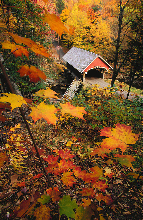 United States, New Hampshire, covered bridge and fall foliage