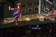 A Flying Globie defies gravity as part of the Harlem Globetrotters' trampoline dunk show at the Schar Center on November 1, 2018. This photograph was awarded the SPJ National Mark of Excellence for sports photography.