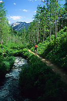 A young man rides singletrack trail in Big Cottonwood Canyon, Wasatch Mountains, Utah.