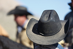 Cowboys lack hats during bison roundup, Ladder Ranch, west of Truth or Consequences, New Mexico, USA.