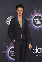 Shawn Mendes at the 2019 American Music Awards held at the Microsoft Theater in Los Angeles, USA on November 24, 2019.