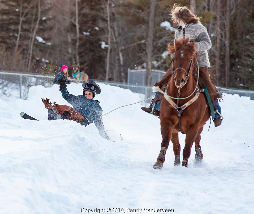 Photo Randy Vanderveen<br /> 2019-03-08<br /> Grande Prairie, Alberta<br /> Tamara Gillett wipes out after losing an edge as she is pulled by Little ridden by Tanya Paley at  Thunder in the Pines at Evergreen Park Friday evening. The inaugural skijoring event, which saw someone on skis or a snowboard pulled around by a horse or horse and rider on a closed course proved a popular event at the Foster's Peace Country Ag Classic for both spectators and participants.