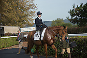 AMANDA SOAR, Side-Saddle Dash, Southern Spinal Injuries Trust charity Day. Wincanotn. 25 October 2015.