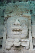 giant (4m = 13 ft high) stone mask of man wearing crocodile mouth headdress at the Mask Temple ( N9-56 ) Lamanai Mayan Ruins, Orange Walk District, Belize, Central America (do)