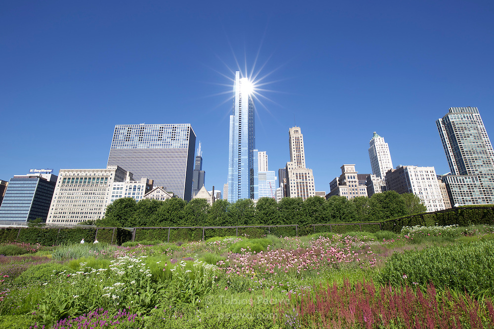 Wide angle view of the Chicago skyline from Millennium Park, with prominent lens flare.
