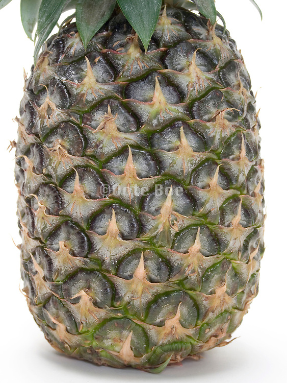 close up of a pineapple