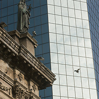 A pigeon flies past a modern glass building that contrasts sharply with the venerable Metropolitan Cathedral in Santiago, Chile.