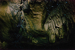 Glow Worms, Abbey Caves