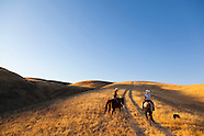 Work Ranch