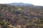 Moeda_MG, Brasil.<br /> <br /> Serra da Moeda em Moeda, Minas Gerais.<br /> <br /> Serra da Moeda in Moeda, Minas Gerais.<br /> <br /> Foto: JOAO MARCOS ROSA / NITRO