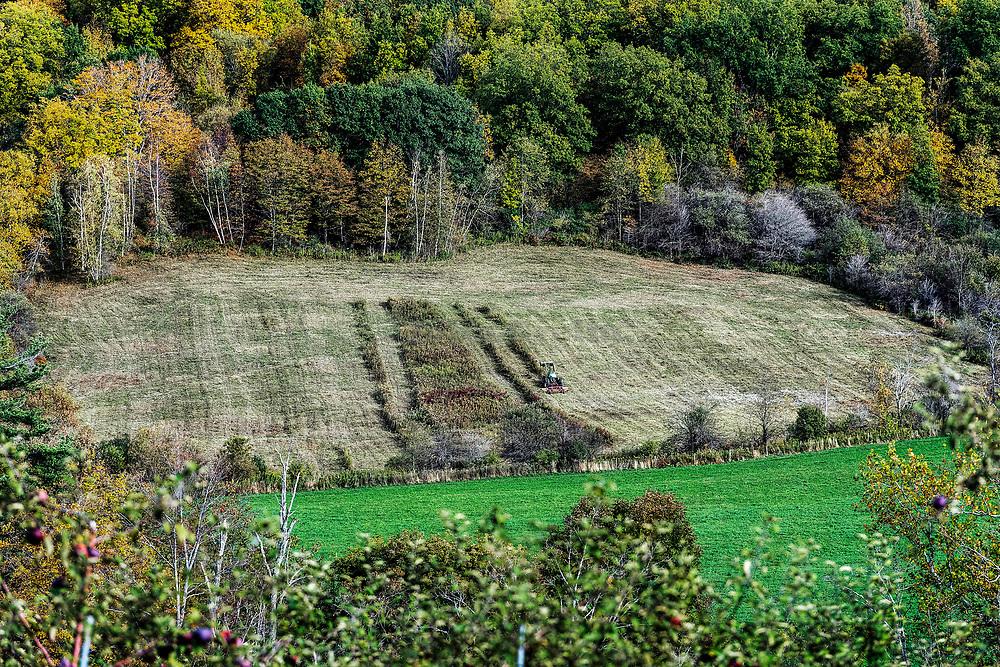 Farmer on tractor mowing field, Massachusetts, USA.