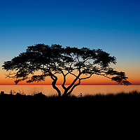 """""""Graduated Sunrise Silhouette""""<br /> <br /> What a magnificent sunrise along the shores of Lake Ontario on a summer morning!"""