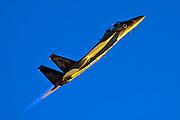 Israeli Air force F-15I Fighter in flight