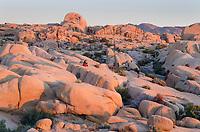 Couple watching sunrise at Jumbo Rocks area of Joshua Tree National Park California