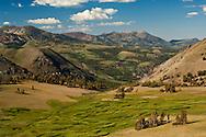 Slopes of the eastern Sierra mountains near Sonora Pass, Toiyabe Natilonal Forest, Mono County, California