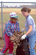Kids ages 9 and 15 working at Youth Express annual community park cleanup.  St Paul  Minnesota USA