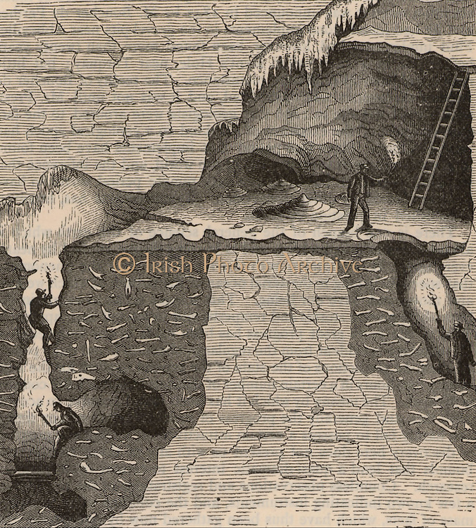 Sectional view of a bone cavern showing debris of animal bones. William Buckland (1784-1856) English geologist and clergyman, considered the remains to be evidence of the Biblical Flood. From 'A Popular History of Science' (London, 1880).  Engraving.