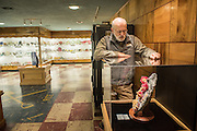 Julian Grey, Director of the Rice Northwest Museum studies the Alma Rose, a prized possession of the museum.