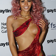 Talulah-Eve attend the Gay Times Honours on 18th November 2017 at the National Portrait Gallery in London, UK.