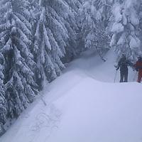 Ulrich Geertz and David Quammen cross country ski in the Carpathian Mountains near Zarnesti.
