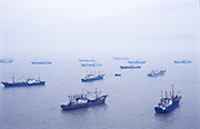 Fishing vessels / trawlers in the harbour of Jin Shan Island