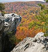 Look across miles of autumn orange and red foliage at Hanging Rock State Park, Stokes County, North Carolina, USA. The eroded quartzite knob called Hanging Rock rises to 2150 feet elevation. The park is 30 miles (48 km) north of Winston-Salem, and approximately 2 miles (3.2 km) from Danbury. Hanging Rock State Park is located in the Sauratown Mountain Range, which is made up of monadnocks (or inselbergs, isolated hills) that are separated from the nearby Blue Ridge Mountains. Prominent peaks in the Sauratown range rise from 1,700 feet (520 m) to more than 2,500 feet (760 m) in elevation and stand in contrast to the surrounding countryside, which averages only 800 feet (240 m) in elevation. Named for the Saura Native Americans who were early inhabitants of the region, the Sauratown Mountains are the erosion-resistant quartzite remnants of mountains pushed up between 250 and 500 million years ago. Stitched from 2 overlapping photos.