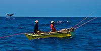Marine Life worldwide by Tim Rock