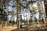 Public picnic site in the Carmel Forest, Israel