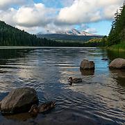 Mount Hood view from Trillium Lake, Oregon.