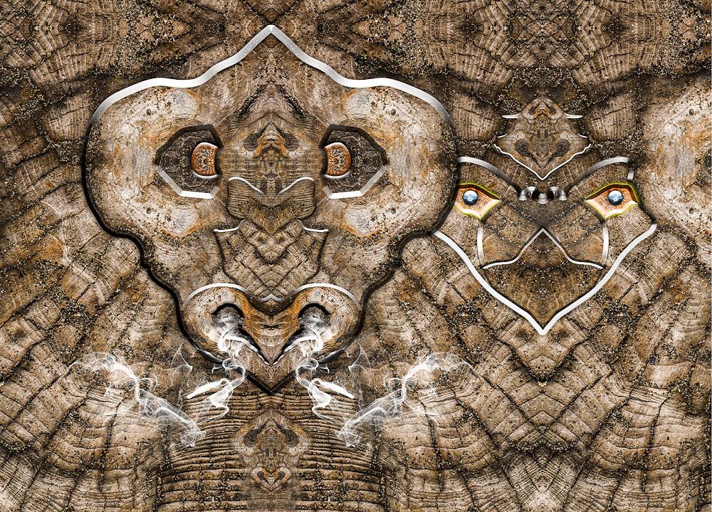 """Skeleton"", derivative image created from a photo of driftwood, morning light, July, Ediz Hook, Olympic Peninsula, Port Angeles Harbor, WA, USA"