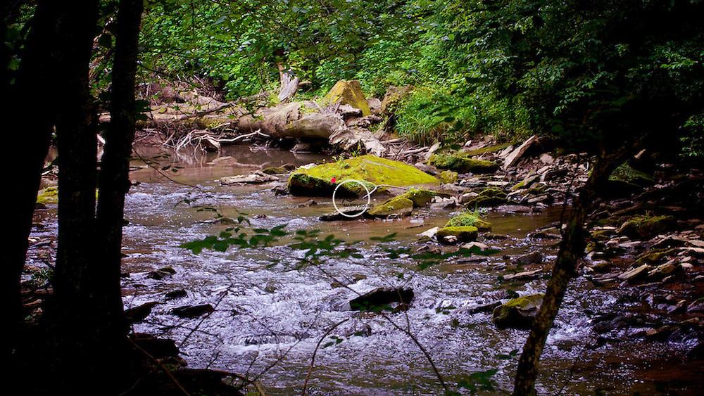 Meandering Creek, Raccoon Creek at Green's Bluff, Indiana