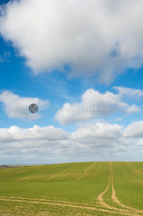 Puffy clouds and green fields in Great Chishill, Cambridgeshire, England.