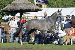 318-Ulivia L<br /> KWPN Paardendagen Ermelo 2004<br /> Photo © Hippo Foto