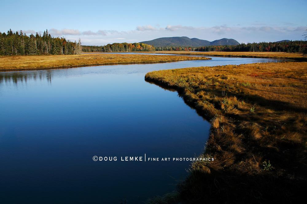 Marshall Brook, Acadia National Park, Maine
