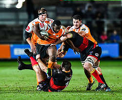 Cheetahs' Ox Nche is tackled by Dragons' Sam Hobbs and Harrison Keddie<br /> <br /> Photographer Craig Thomas/Replay Images<br /> <br /> Guinness PRO14 Round 18 - Dragons v Cheetahs - Friday 23rd March 2018 - Rodney Parade - Newport<br /> <br /> World Copyright © Replay Images . All rights reserved. info@replayimages.co.uk - http://replayimages.co.uk