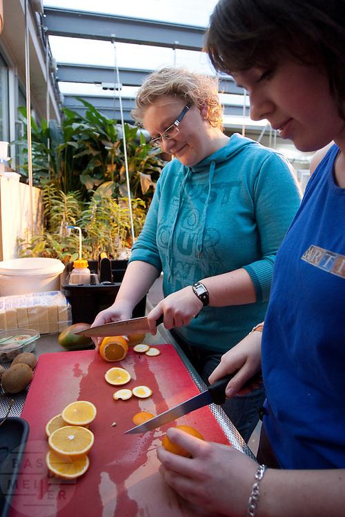 Mirella Plug mag voor een dag meelopen als dierverzorger in de vlindertuin van Artis. Zij heeft de droombaanactie van het CNV gewonnen. Voor een dag kunnen zij dan de baan van hun dromen vervullen. Mirella wordt begeleidt door Ko Veltman en zijn stagiaire Rebecca. Naast de vlindertuin mocht ze ook wat oefeningen doen met een zeeleeuw