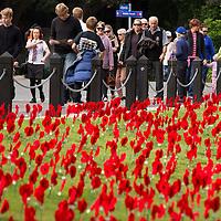 Anzac Day, civic service, Cenotaph, Memorial Park, Hamilton, Saturday 25 April 2015. Photo: Stephen Barker/Barker Photography. ©Hamilton City Council