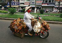 """Motorbike in Saigon carrying live chicken and ducks. Vietnam 2003<br /> Available as Fine Art Print in the following sizes:<br /> 08""""x12""""US$   100.00<br /> 10""""x15""""US$ 150.00<br /> 12""""x18""""US$ 200.00<br /> 16""""x24""""US$ 300.00<br /> 20""""x30""""US$ 500.00"""