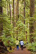 Female hikers walk through dense forest along the Sol Duc Falls Trail in Olympic National Park, Washington.