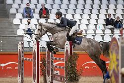 Verduyn Tom, BEL, Cardano VTH<br /> Pavo Hengsten competitie - Oudsbergen 2021<br /> © Hippo Foto - Dirk Caremans<br />  22/02/2021