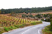 Minervois. Languedoc. Vineyards. France. Europe.