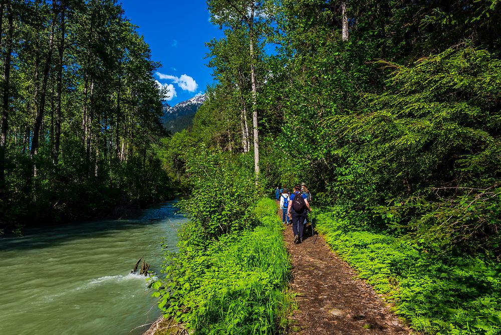 Hiking the Chilkoot Trail (which miners originally used to reach the Klondkike Gold Rush to the Yukon), Dyea (near Skagway), Alaska USA.