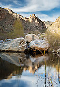 On an unusually warm January afternoon, beautiful late-day light greeted me as I waded through Sabino Creek.