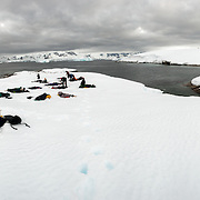 A high resolution panorama of people camping in the snow at Hughes Bay on the Antarctic Peninsula.