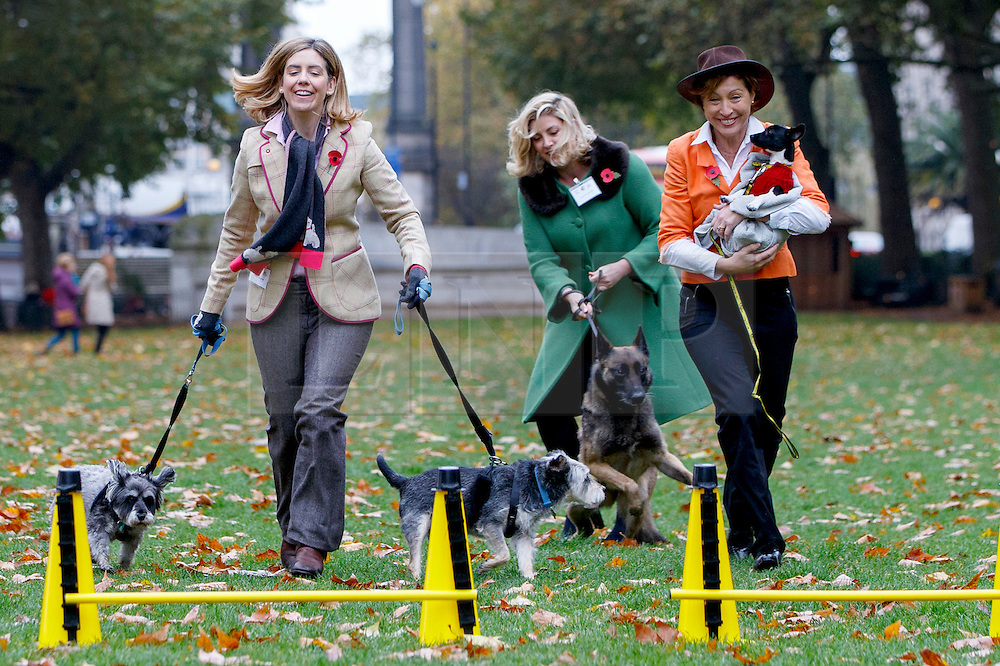© Licensed to London News Pictures. 29/10/2015. London, UK. Conservatives MPs Andrea Jenkyns, Penny Mordaunt and Rebecca Pow taking part at Westminster Dog of the Year competition in Victoria Tower Gardens in London on Thursday, 29 October 2015. Photo credit: Tolga Akmen/LNP