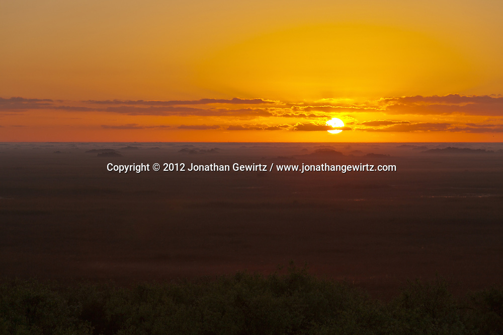 The sun rises over foggy sawgrass prairie in the Shark Valley section of Everglades National Park, Florida. WATERMARKS WILL NOT APPEAR ON PRINTS OR LICENSED IMAGES.